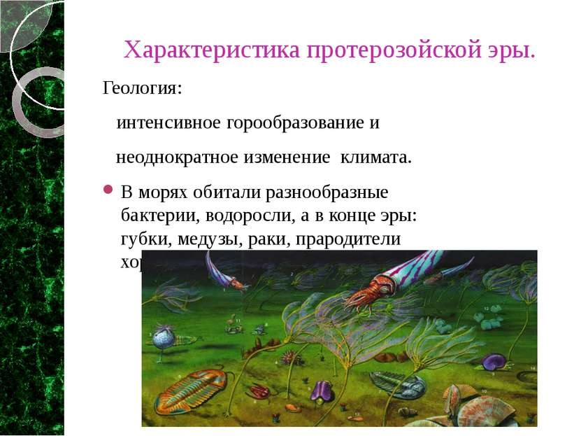 Характеристика протерозойской эры. Геология: интенсивное горообразование и не...