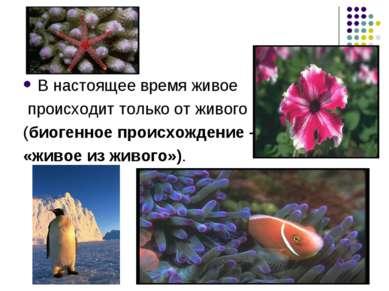 В настоящее время живое происходит только от живого (биогенное происхождение ...