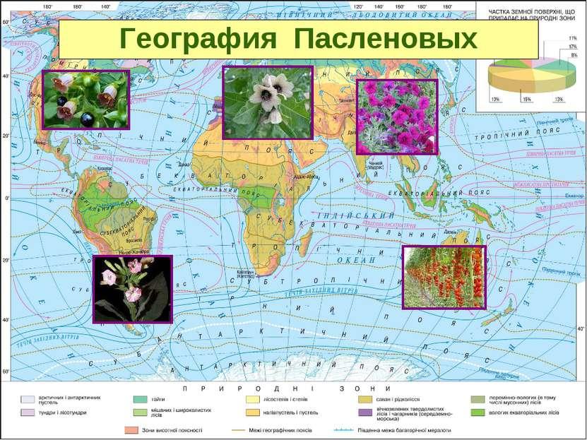 География Пасленовых