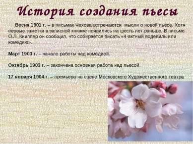 История создания пьесы Весна 1901 г. – в письмах Чехова встречаются мысли о н...