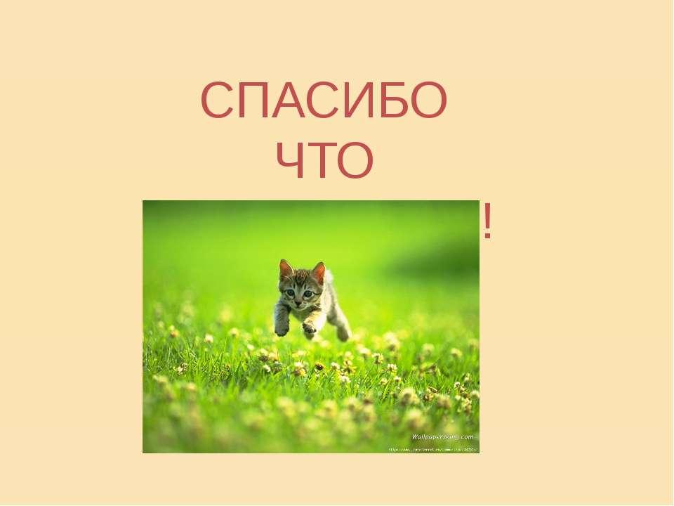 СПАСИБО ЧТО ПОСЛУШАЛИ!;))