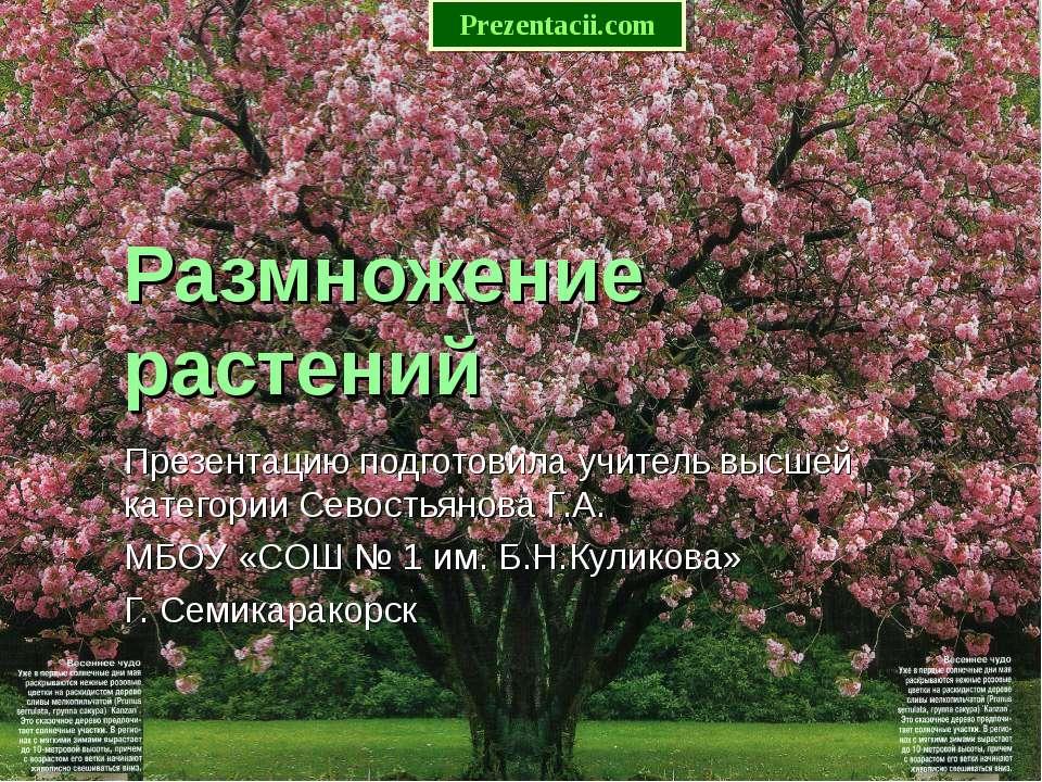 Размножение растений Презентацию подготовила учитель высшей категории Севость...