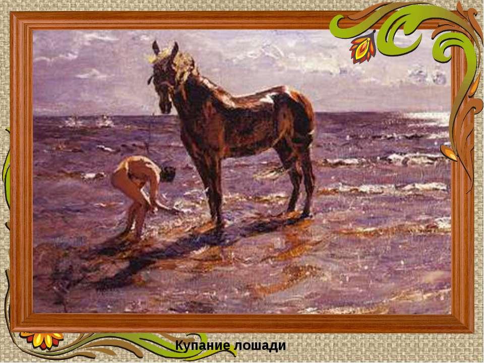 Купание лошади