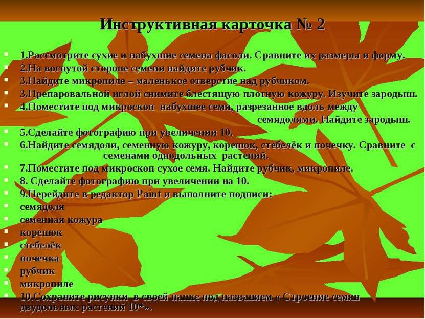 Инструктивная карточка № 2 1.Рассмотрите сухие и набухшие семена фасоли. Срав...