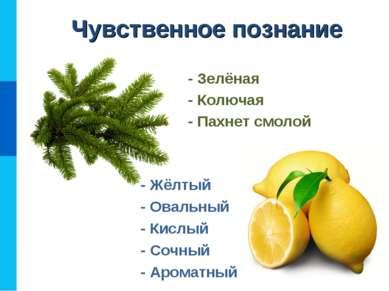 - Жёлтый - Овальный - Кислый - Сочный - Ароматный - Зелёная - Колючая - Пахне...