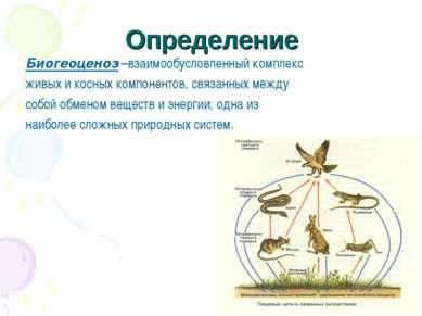 Определение Биогеоценоз –взаимообусловленный комплекс живых и косных компонен...