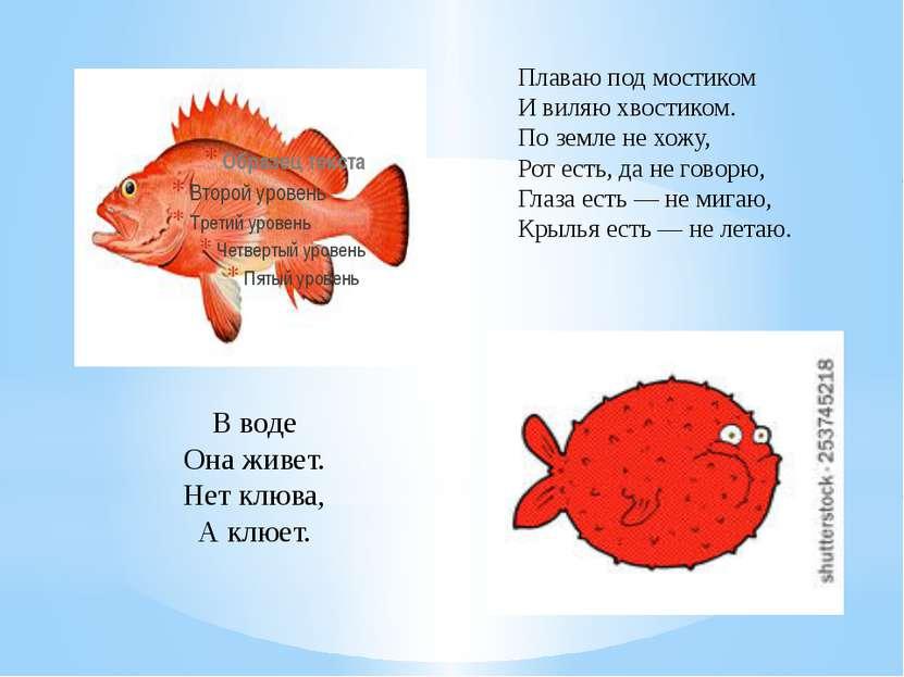 В воде Она живет. Нет клюва, А клюет. Плаваю под мостиком И виляю хвостиком. ...