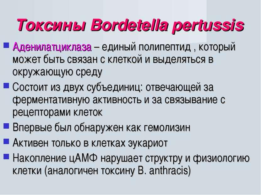 Токсины Bordetella pertussis Аденилатциклаза – единый полипептид , который мо...
