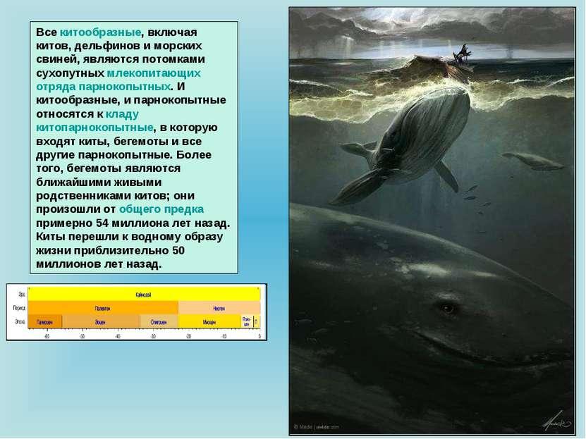 Все китообразные, включая китов, дельфинов и морских свиней, являются потомка...