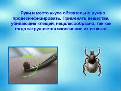 Руки и место укуса обязательно нужно продезинфицировать. Применять вещества, ...