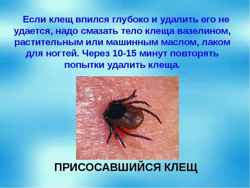 Если клещ впился глубоко и удалить его не удается, надо смазать тело клеща ва...