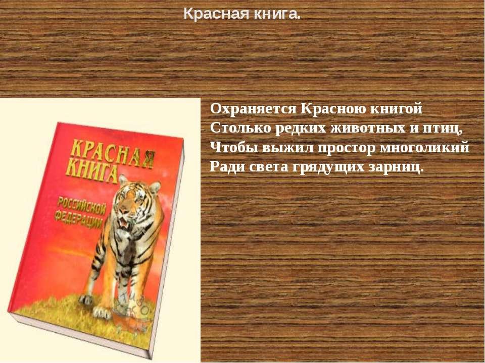 Охраняется Красною книгой Столько редких животных и птиц, Чтобы выжил простор...