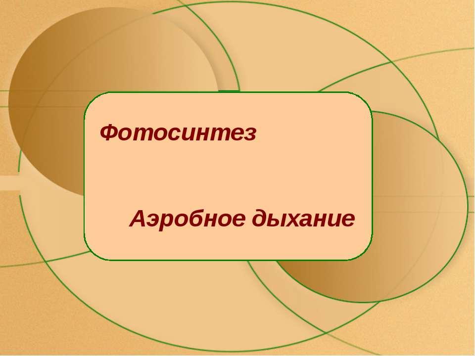 Фотосинтез Аэробное дыхание