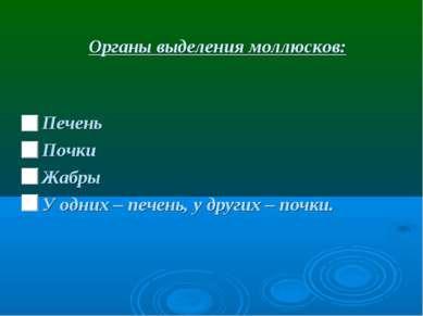 Органы выделения моллюсков: Печень Почки Жабры У одних – печень, у других – п...