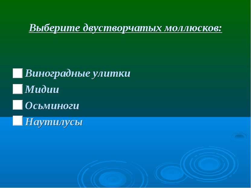 Выберите двустворчатых моллюсков: Виноградные улитки Мидии Осьминоги Наутилусы