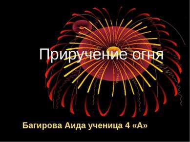 Приручение огня Багирова Аида ученица 4 «А»