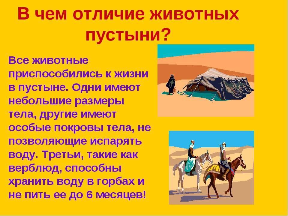 В чем отличие животных пустыни? Все животные приспособились к жизни в пустыне...