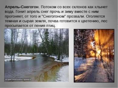 Апрель-Снегогон. Потоком со всех склонов как хлынет вода. Гонит апрель снег п...