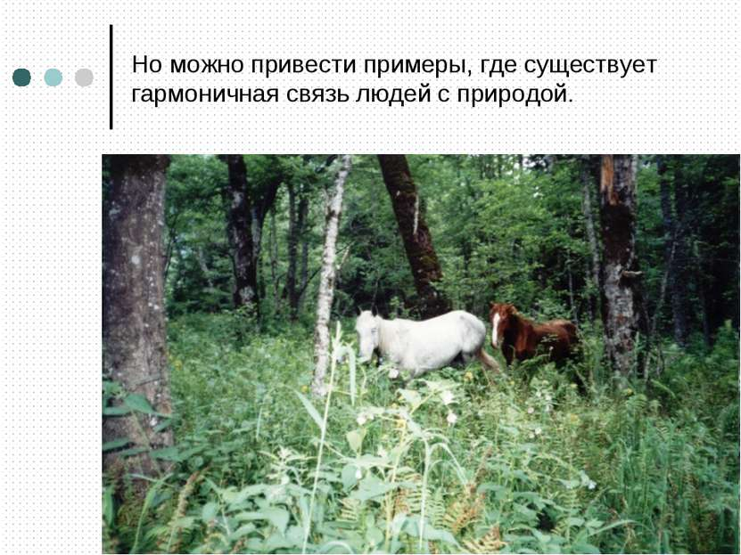 Но можно привести примеры, где существует гармоничная связь людей с природой.