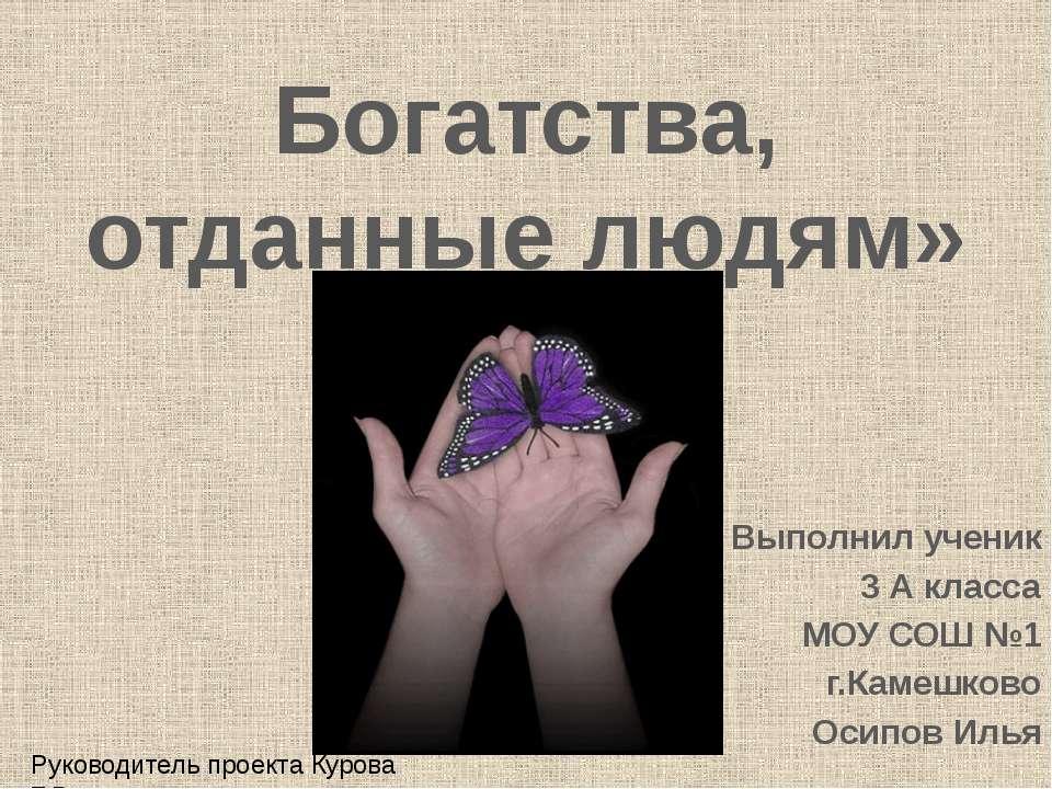 Богатства, отданные людям» Выполнил ученик 3 А класса МОУ СОШ №1 г.Камешково ...
