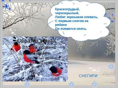 - Красногрудый, чернокрылый, Любит зернышки клевать, С первым снегом на ряб...