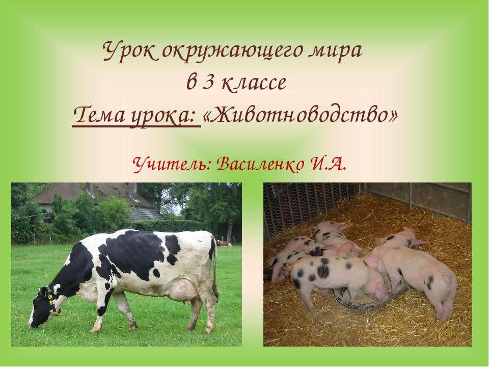 Урок окружающего мира в 3 классе Тема урока: «Животноводство» Учитель: Василе...