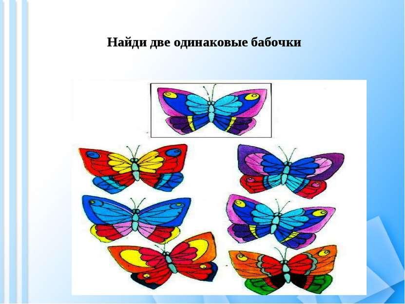Найди две одинаковые бабочки