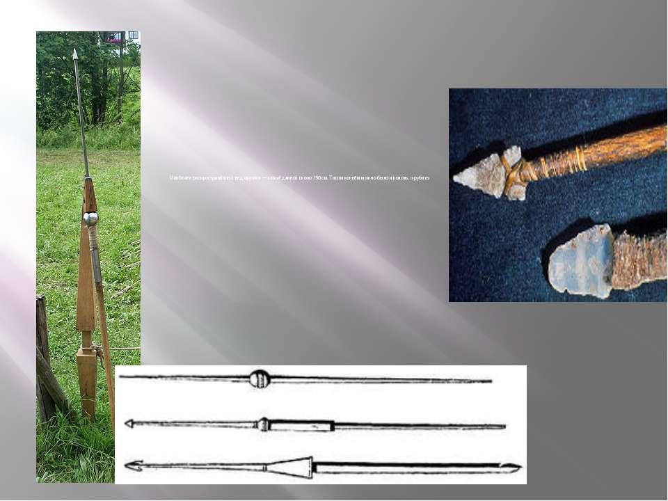 Наиболее распространённый вид оружия—копьёдлиной около 150см. Таким копьё...