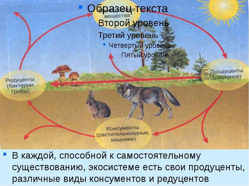 В каждой, способной к самостоятельному существованию, экосистеме есть свои пр...