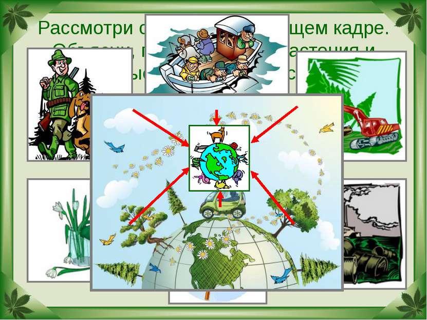 Рассмотри схему на следующем кадре. Объясни, почему многие растения и животны...