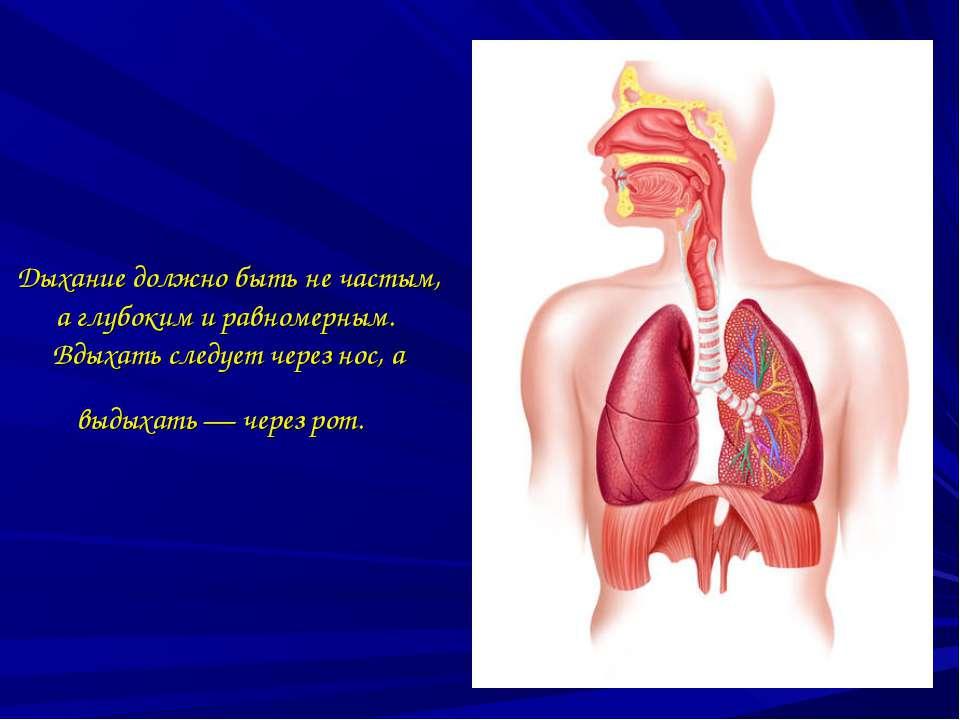 Дыхание должно быть не частым, а глубоким и равномерным. Вдыхать следует чере...