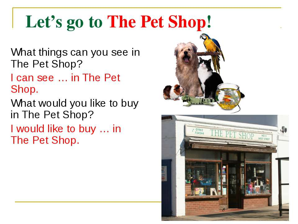 Let's go to The Pet Shop! What things can you see in The Pet Shop? I can see ...
