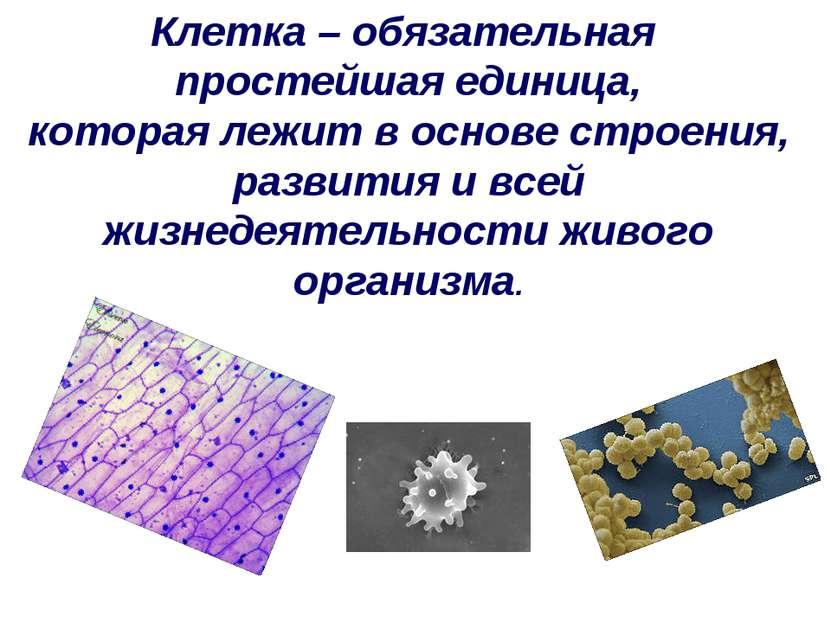 Клетка – обязательная простейшая единица, которая лежит в основе строения, ра...