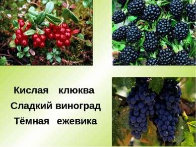 * Тёмная Кислая Сладкий клюква виноград ежевика