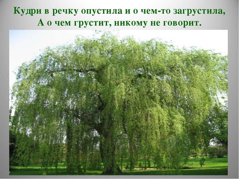 Кудри в речку опустила и о чем-то загрустила, А о чем грустит, никому не гово...