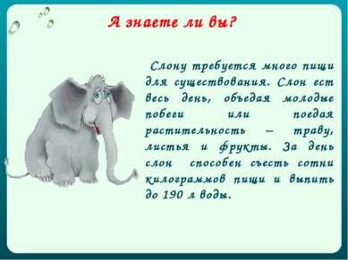 Слону требуется много пищи для существования. Слон ест весь день, объедая мол...