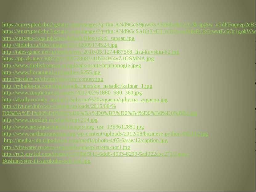 https://encrypted-tbn2.gstatic.com/images?q=tbn:ANd9GcS9jnwRsARi8dwlbGCU3h-ip...