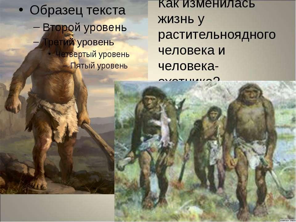 Как изменилась жизнь у растительноядного человека и человека-охотника?