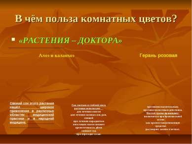 В чём польза комнатных цветов? «РАСТЕНИЯ – ДОКТОРА» Алоэ и каланхоэ Свежий со...