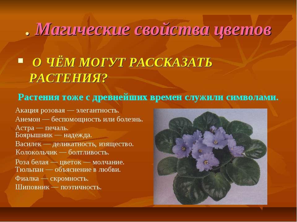 . Магические свойства цветов О ЧЁМ МОГУТ РАССКАЗАТЬ РАСТЕНИЯ? Растения тоже с...