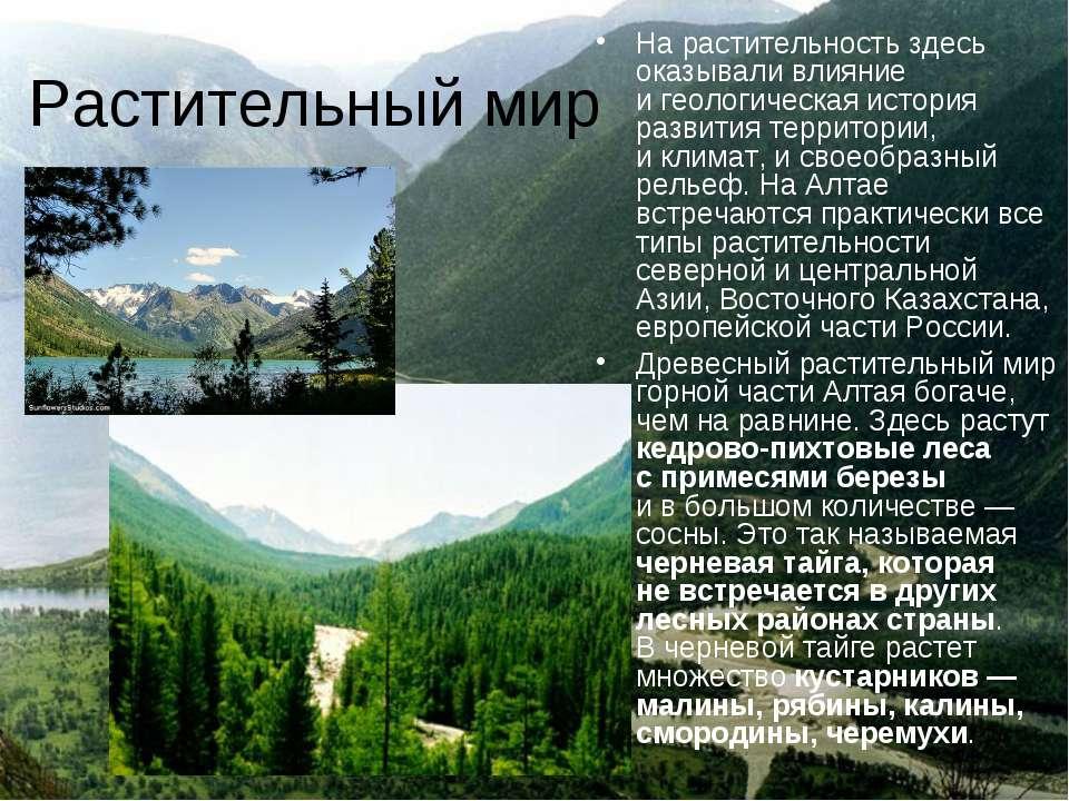Растительный мир Нарастительность здесь оказывали влияние игеологическая ис...