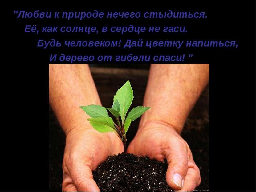 """""""Любви к природе нечего стыдиться. Её, как солнце, в сердце не гаси. Будь чел..."""