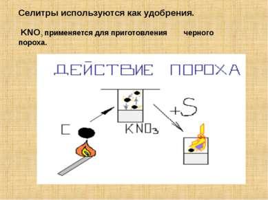 Селитры используются как удобрения. KNO3 применяется для приготовления черног...