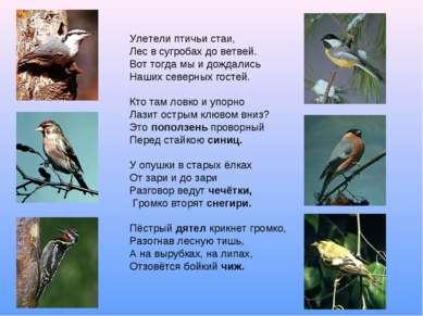 Улетели птичьи стаи, Лес в сугробах до ветвей. Вот тогда мы и дождались Наших...