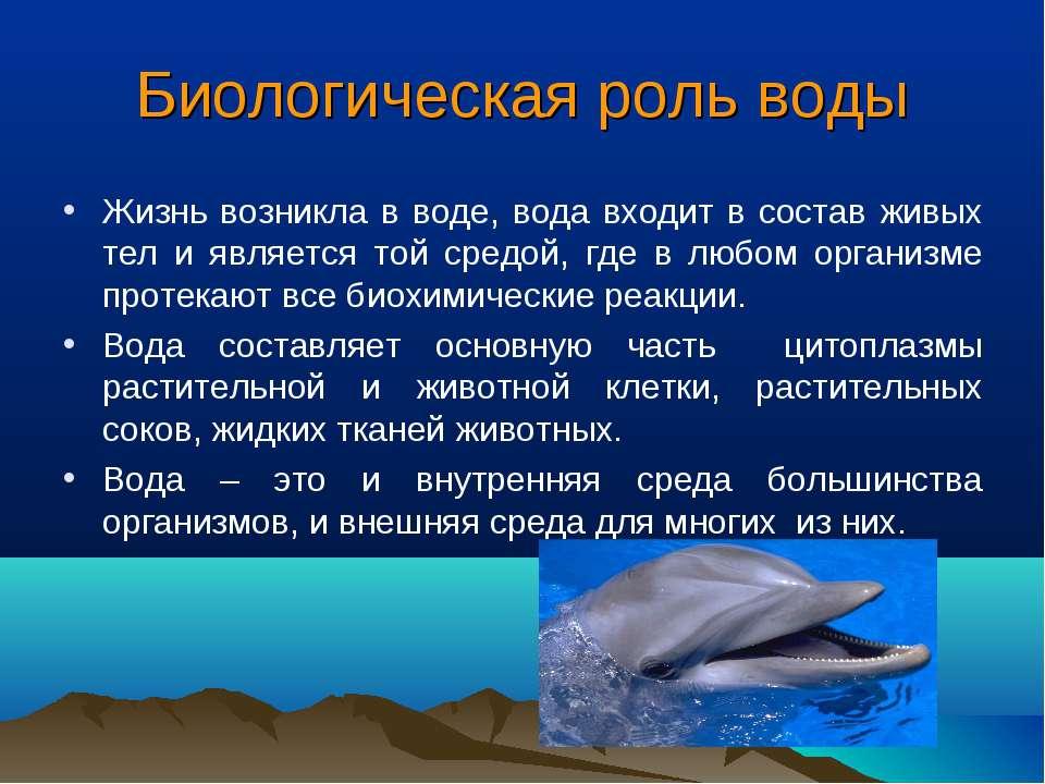Биологическая роль воды Жизнь возникла в воде, вода входит в состав живых тел...