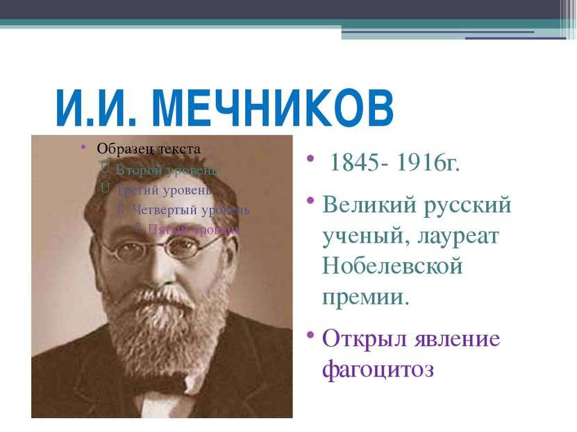 И.И. МЕЧНИКОВ 1845- 1916г. Великий русский ученый, лауреат Нобелевской премии...