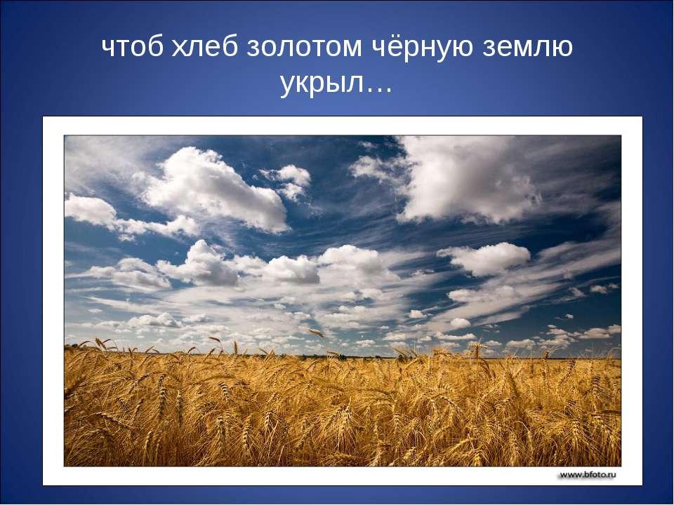чтоб хлеб золотом чёрную землю укрыл…