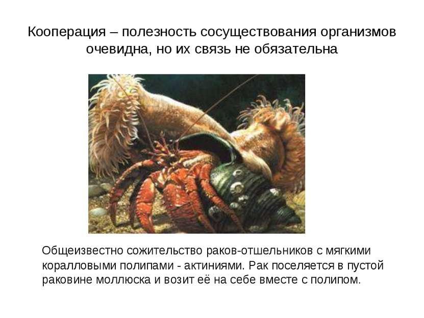 Кооперация – полезность сосуществования организмов очевидна, но их связь не о...