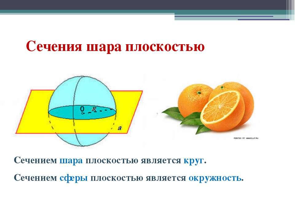 Сечения шара плоскостью Сечением шара плоскостью является круг. Сечением сфер...