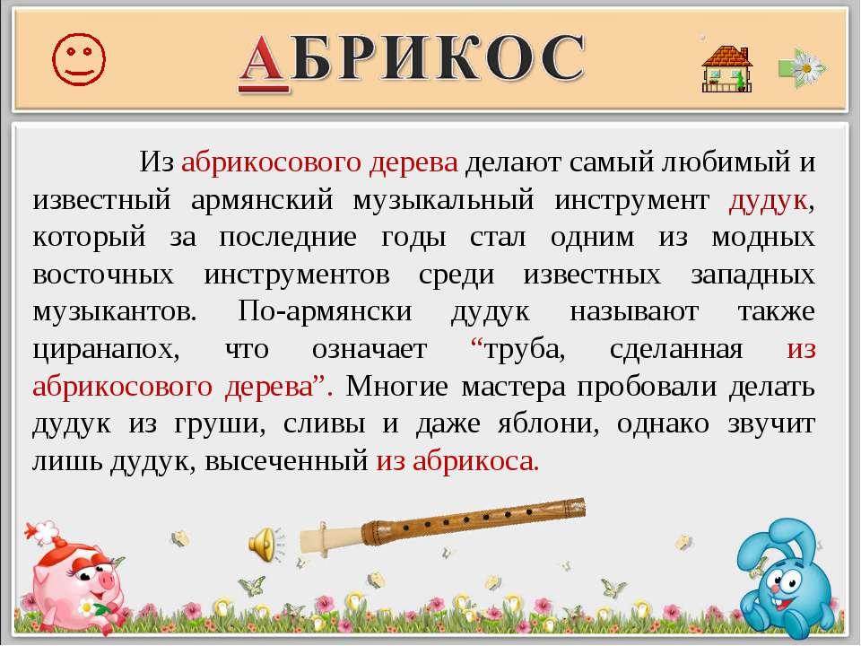 Из абрикосового дерева делают самый любимый и известный армянский музыкальный...